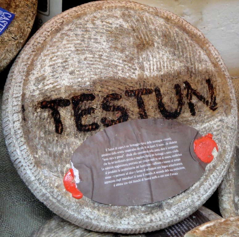 Cheese_Testun