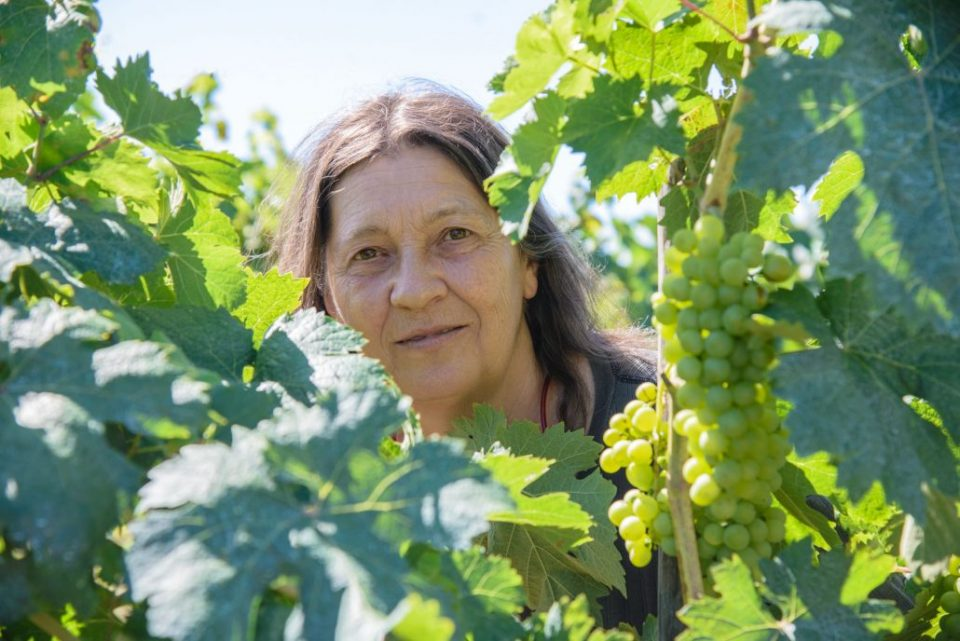 Corinna ist einst aus Mailand ins Paradies der toskanischen Landschaft gezogen und erfüllt sich hier ihren Lebenstraum