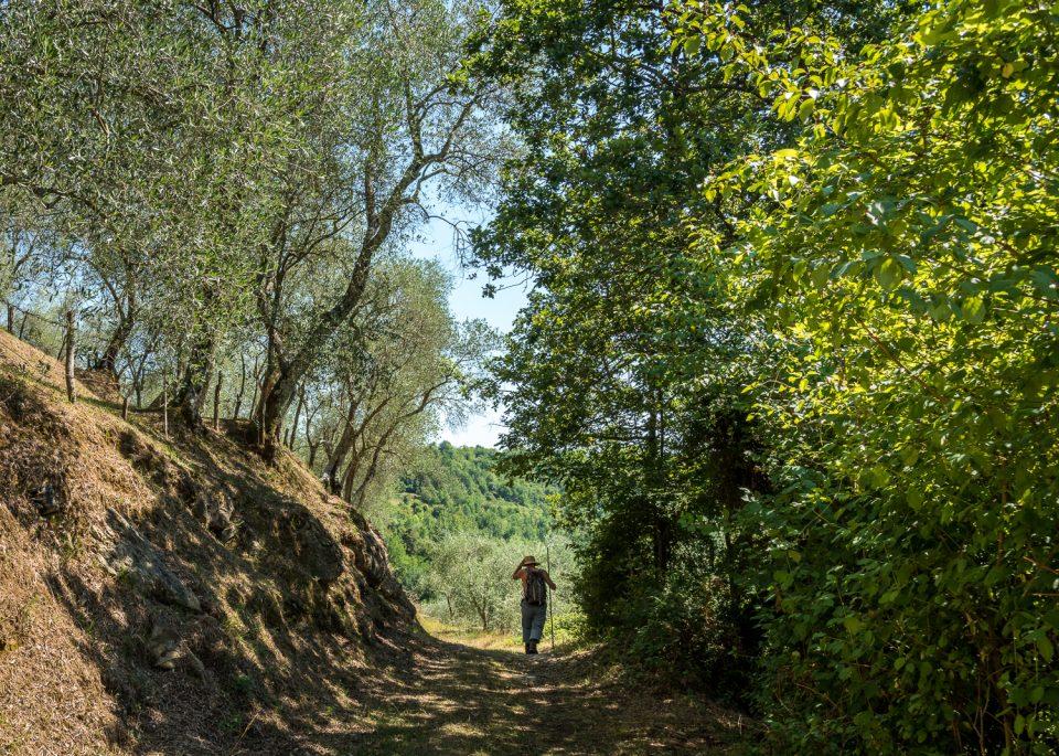 Wandern in der Lunigiana
