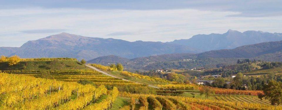 Landschaft bei Corno di Rosazzo