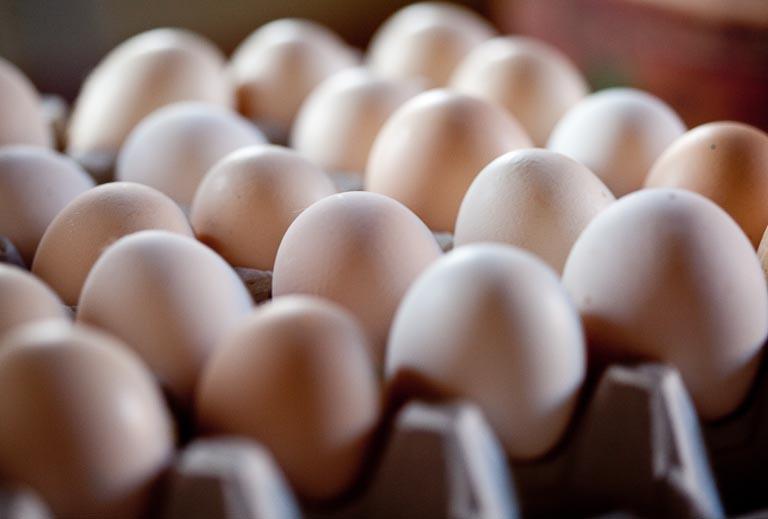 Schneeweiße Eier