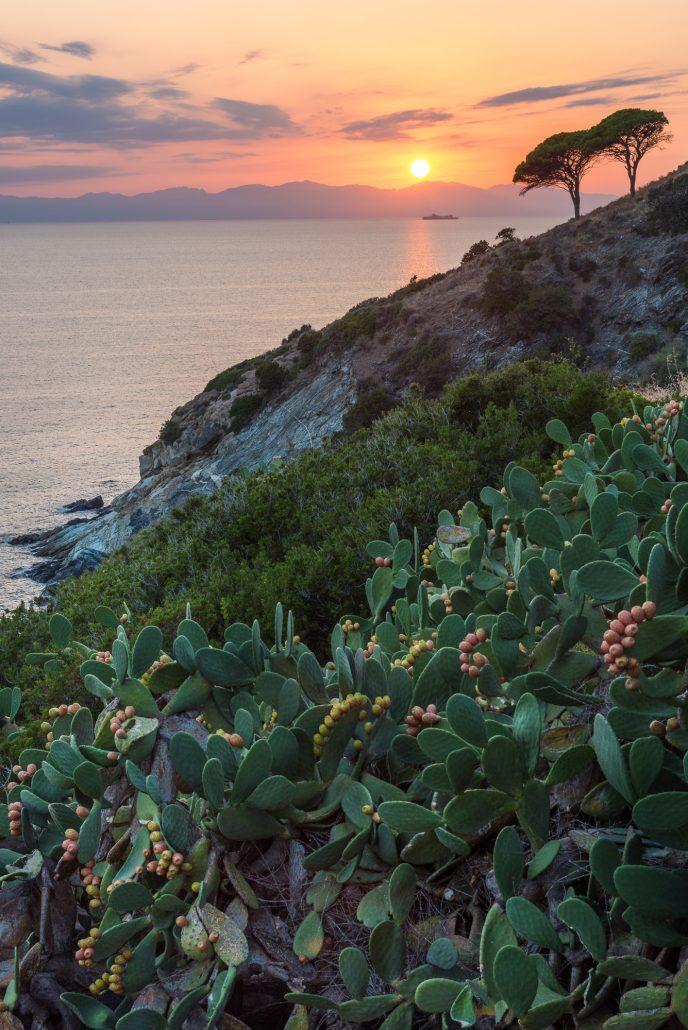 Sonnenuntergang bei Pomonte