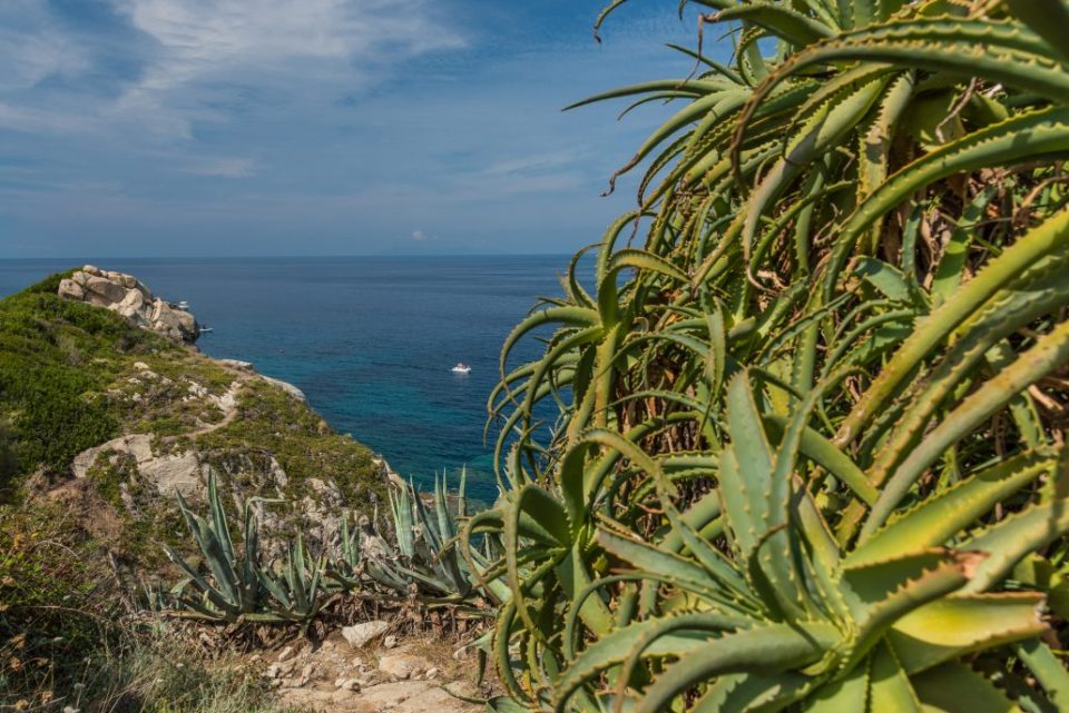 Elba, wandern mit Meerblick