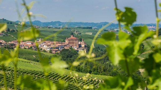 Wanderreisen mit Besuchen im Weinkeller in Barolo und Barbaresco, in den Langhe und im Monferrato