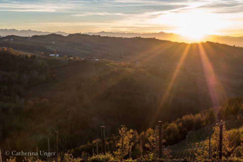 Sonnenuntergang in den Langhe
