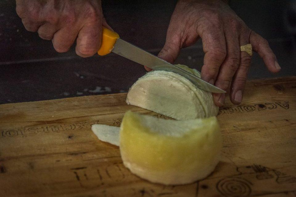 Frischer Pecorino